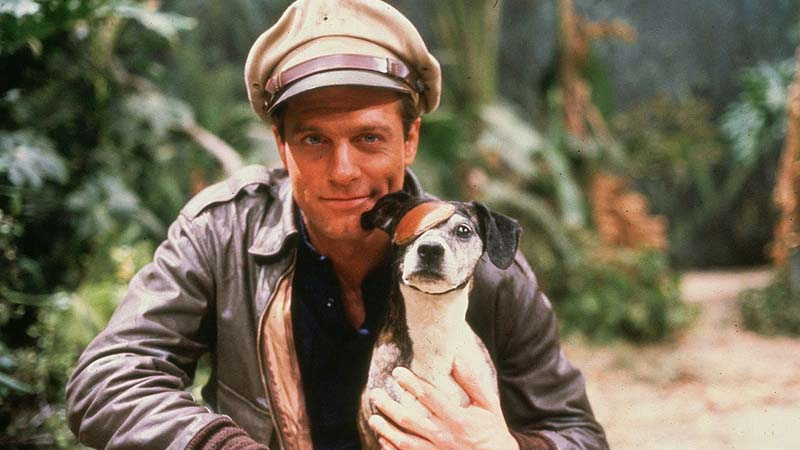 Los cuentos del mono de oro (1982 – 1983)