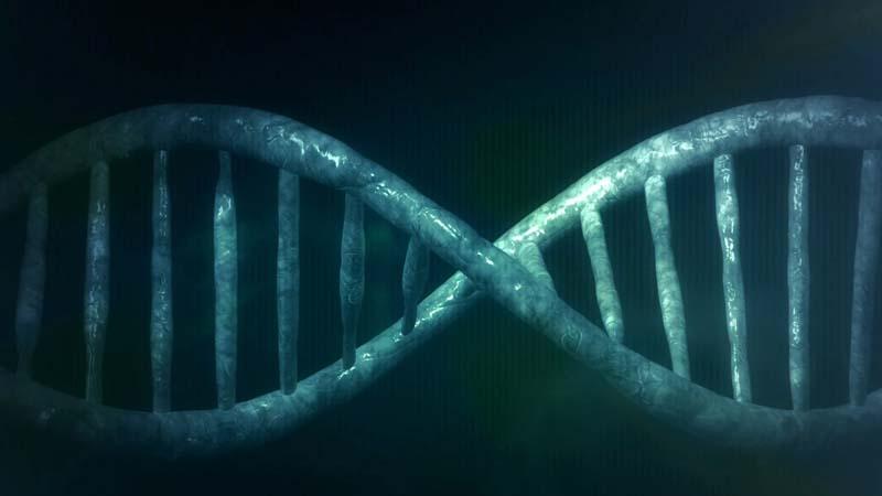 Test de ADN: lo que empezó en los 80 y hasta donde ha llegado